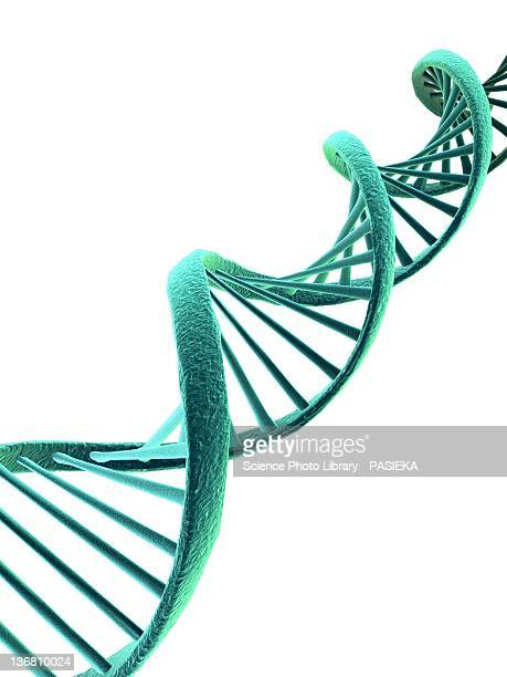 dna, artwork - dna stock illustrations