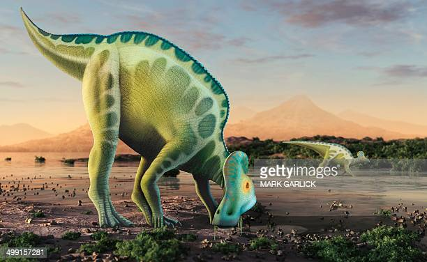Artwork of a corythosaurus dinosaur