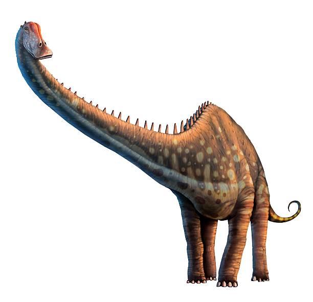 Artwork Of A Diplodocus Dinosaur Wall Art
