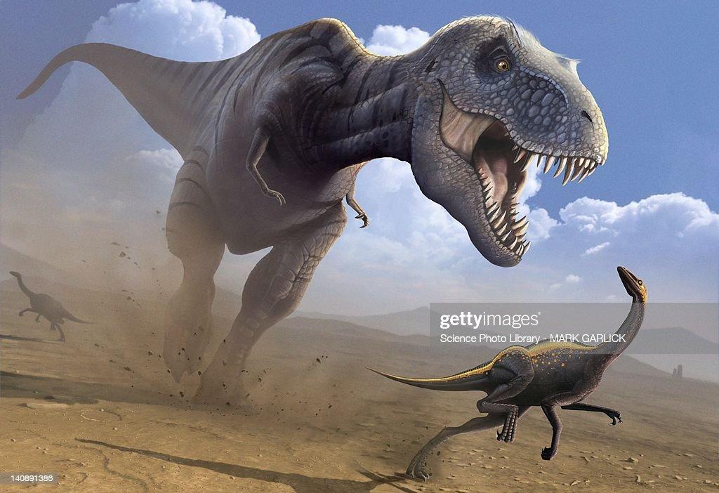 Artwork of a Tyrannosaurus rex hunting : stock illustration