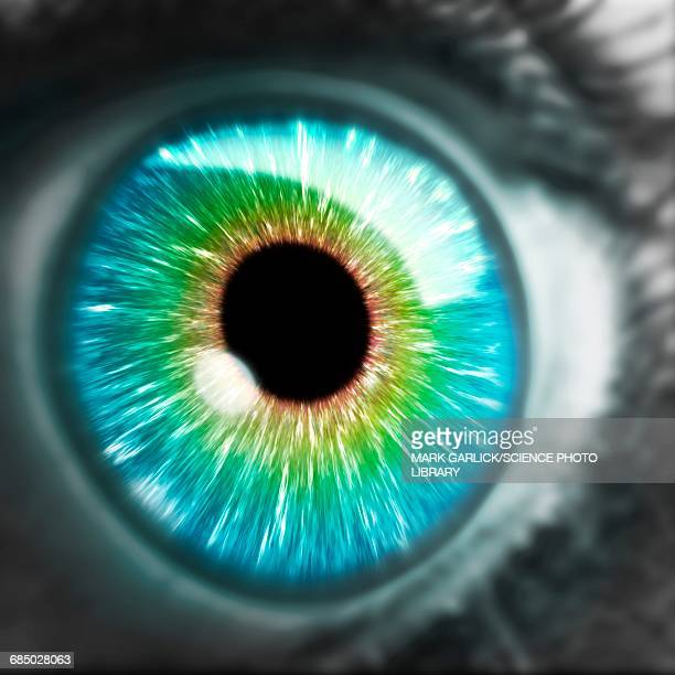 Artwork of human eye