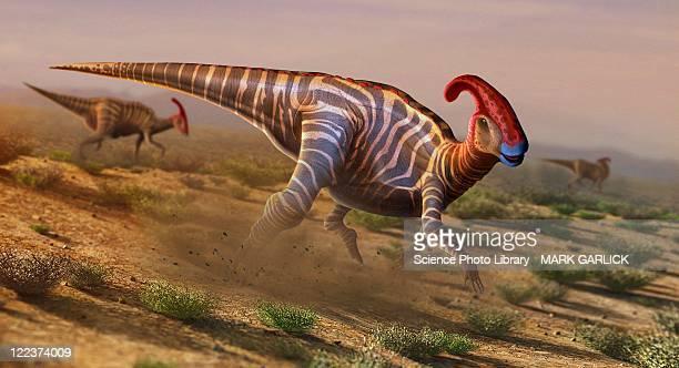artwork of parasaurolophus - hadrosaurid stock illustrations, clip art, cartoons, & icons