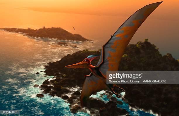 artwork of pteranodon sternbergi - hadrosaurid stock illustrations, clip art, cartoons, & icons