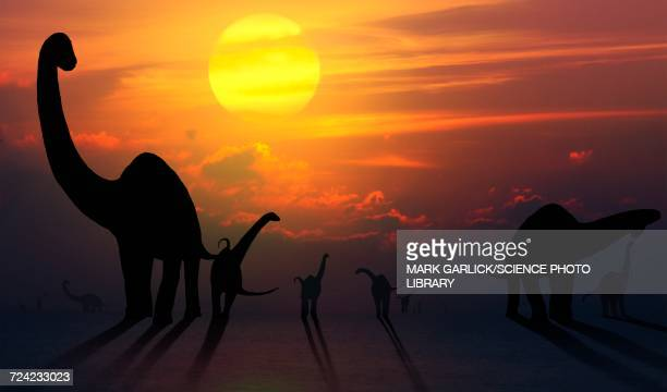 artwork of sauropod dinosaurs at sunset - jurassic stock illustrations, clip art, cartoons, & icons