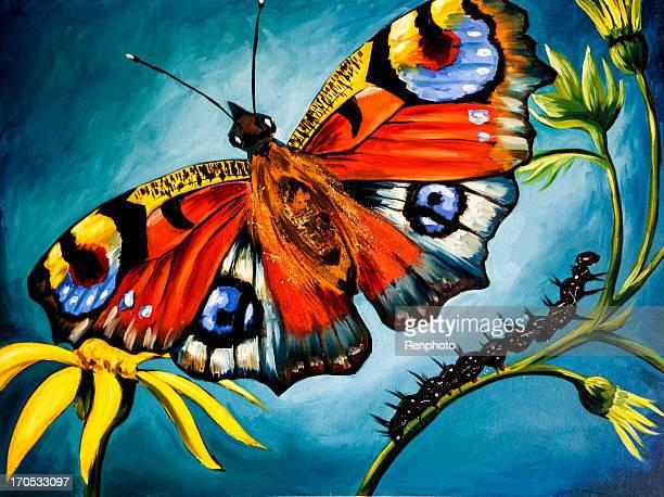 Artwork: Peacock Butterfly