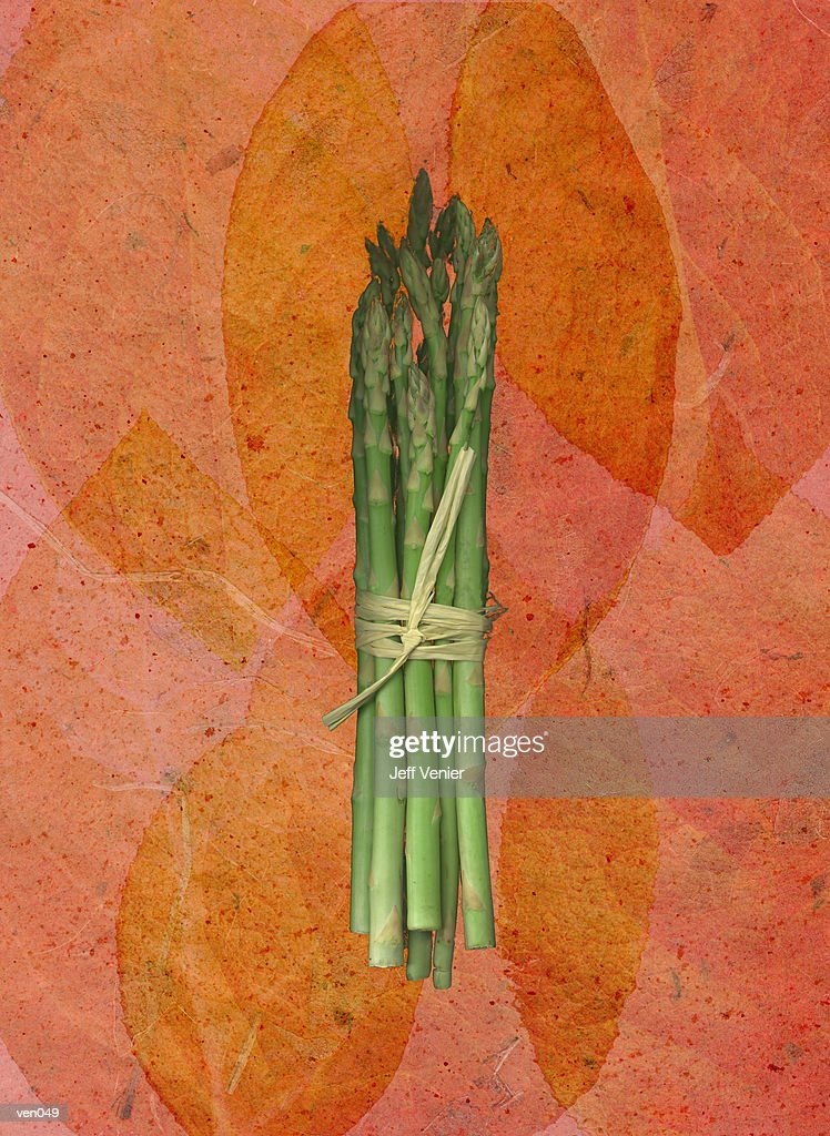 Asparagus on Leaf Background : Stock Illustration