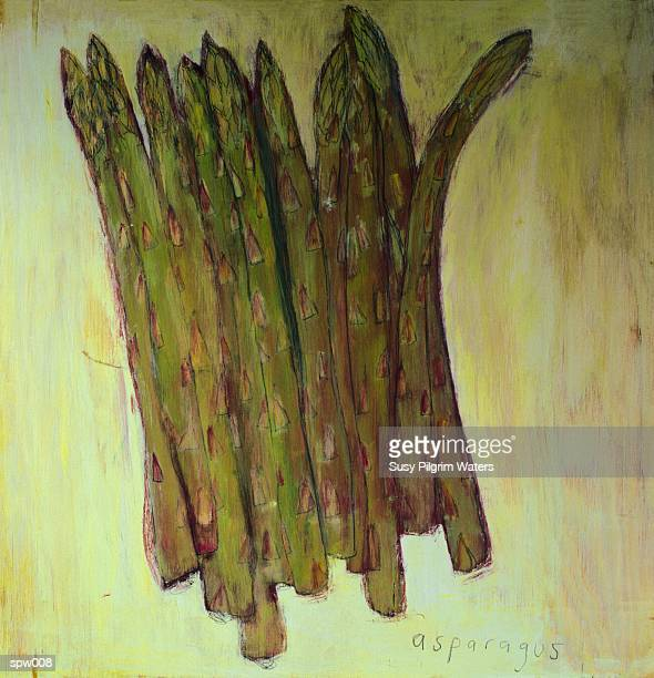 asparagus spears - medium group of objects stock illustrations, clip art, cartoons, & icons