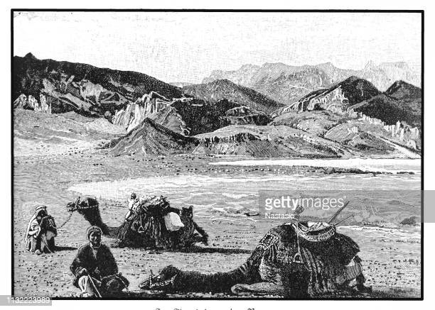at the beach of the red sea - north african ethnicity stock illustrations, clip art, cartoons, & icons