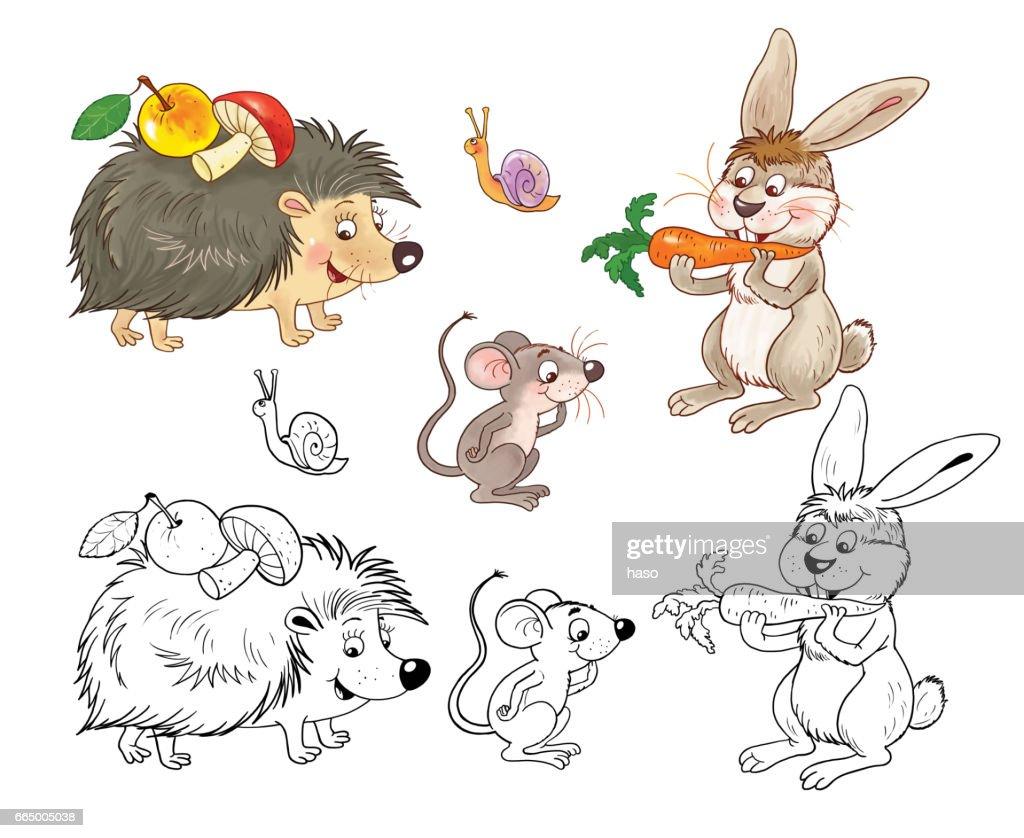 Kleurplaten Dieren Van De Zoo.In De Dierentuin Schattige Bos Dieren Illustratie Voor Kinderen