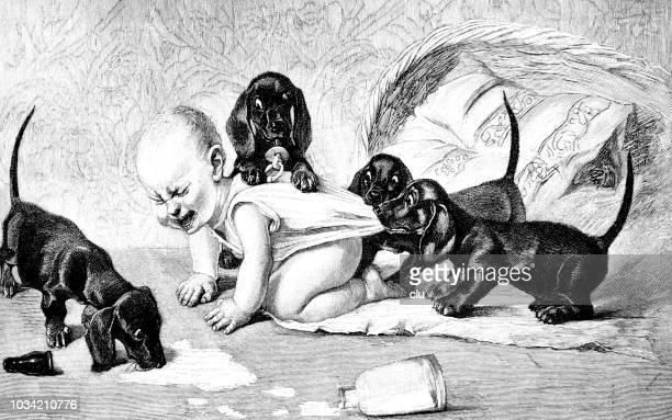 ilustraciones, imágenes clip art, dibujos animados e iconos de stock de ataque de basset en un bebé - maltrato infantil