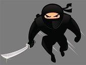Attacking Ninja