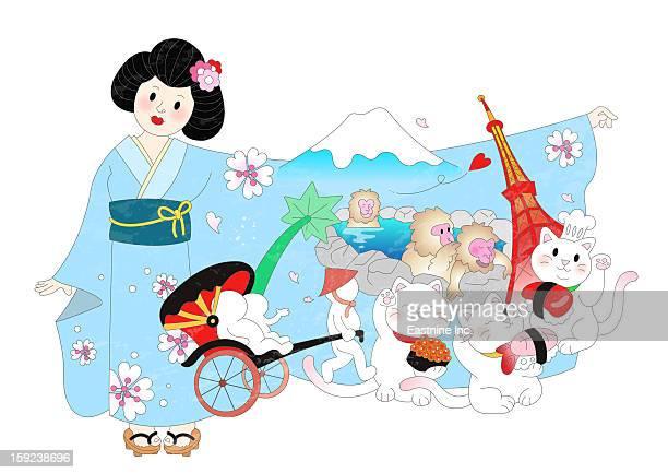 ilustraciones, imágenes clip art, dibujos animados e iconos de stock de attractions of japan - mt. fuji