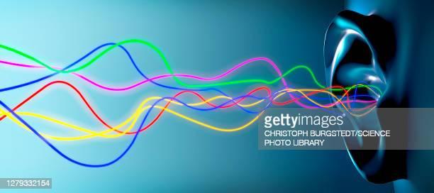 illustrazioni stock, clip art, cartoni animati e icone di tendenza di audio waves entering ear, illustration - scuotere