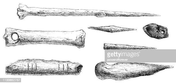 "aurignacian objects found with  ""the fossil man of menton"" at balzi rossi caves, liguria, italy - 43,000 to 37,000 years ago - paleolitico stock illustrations"