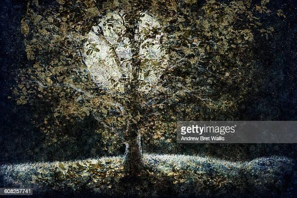autmn tree bathed in moonlight. - digital composite stock illustrations