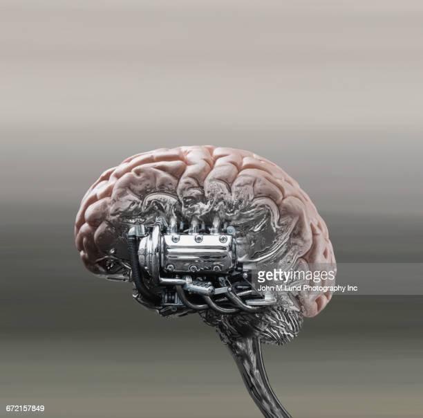 Automobile engine powering brain stem