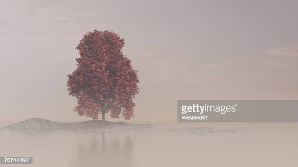 autumnal maple tree on rock in water, 3d rendering - fog stock illustrations