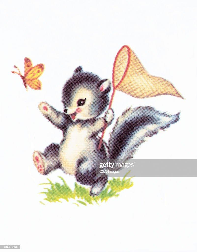 Baby squirrel : stock illustration