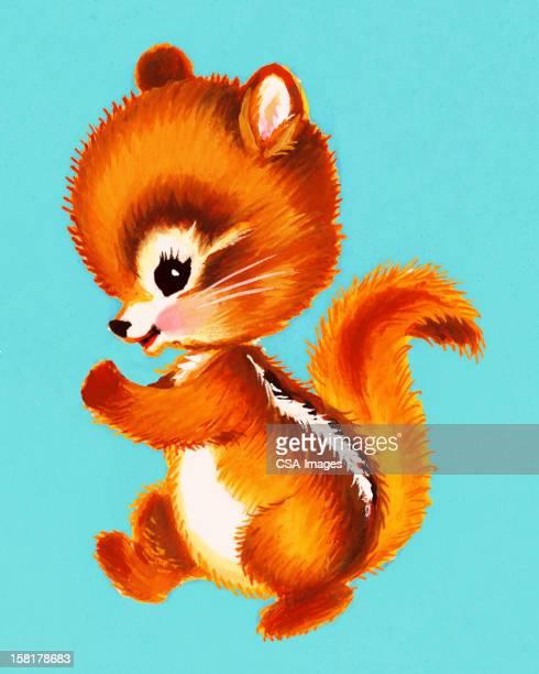 baby squirrel - chipmunk stock illustrations