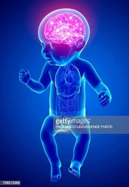 babys brain activity, illustration - baby stock illustrations