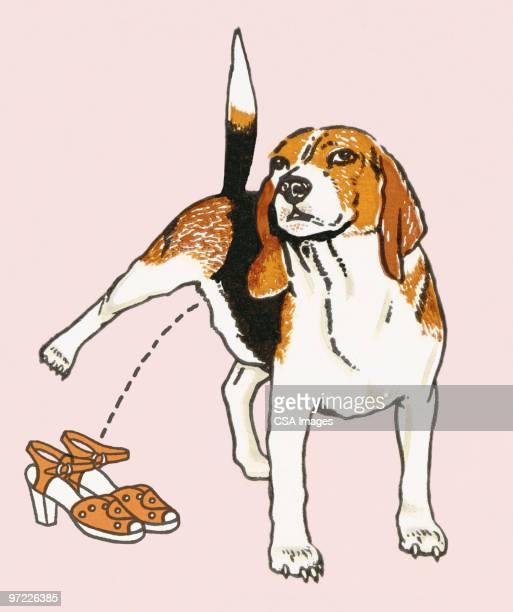 ilustraciones, imágenes clip art, dibujos animados e iconos de stock de bad dog - orina