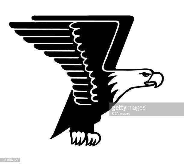 bald eagle - bald eagle stock illustrations