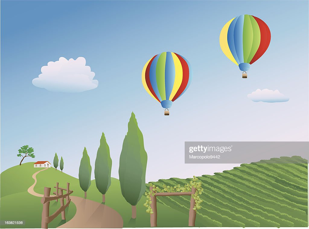Balloons over a Vineyard