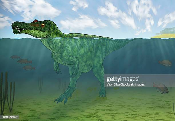 Baryonyx swimming amongst some Lepidotes fish.