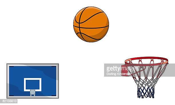 Basketball backboard, ball, hoop and netting