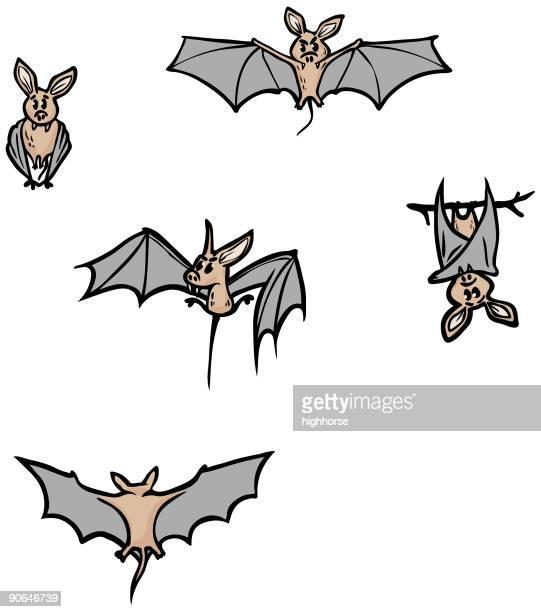 Bats Bonus Pack