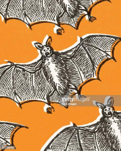 ilustraciones, imágenes clip art, dibujos animados e iconos de stock de bats - alas desplegadas