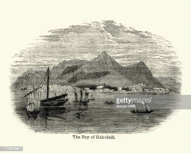 bay of hokkaido, japan, 19th century - hokkaido stock illustrations, clip art, cartoons, & icons