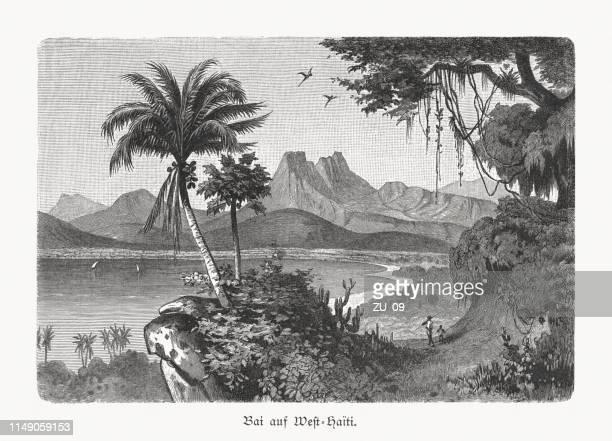 illustrations, cliparts, dessins animés et icônes de une baie de l'ouest-haïti, gravure sur bois, publiée en 1897 - image du xixème siècle