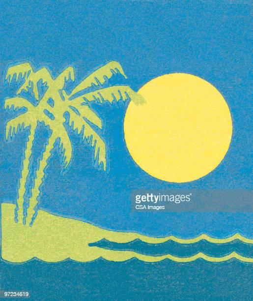 ilustraciones, imágenes clip art, dibujos animados e iconos de stock de beach scene - puesta de sol