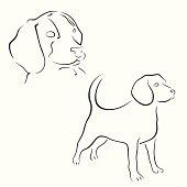 Beagle design set