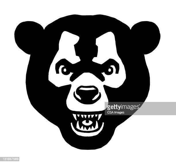 bear head - spleen stock illustrations