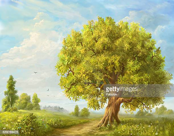 beautiful summer - deciduous tree stock illustrations, clip art, cartoons, & icons