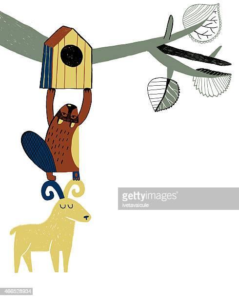 Beaver and goat putting up bird house