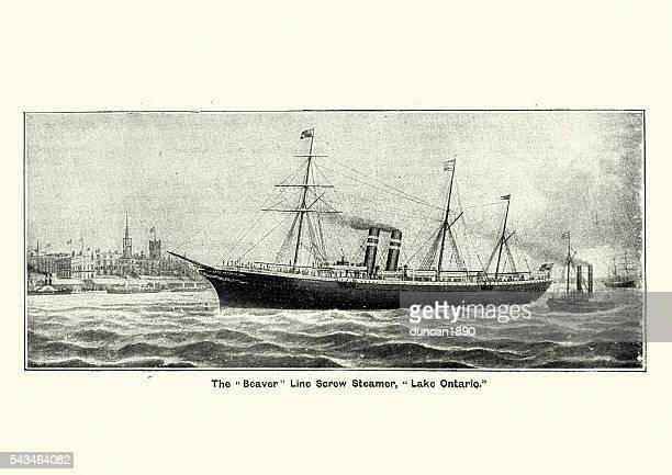 beaver line screw steamer, lake ontario, 1894 - lake ontario stock illustrations, clip art, cartoons, & icons