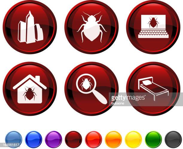 Bed Bug royalty free vector icon set