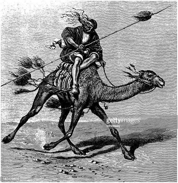 illustrations, cliparts, dessins animés et icônes de arabian dromadaire avec bédouin guerrier noir et blanc gravé - lance