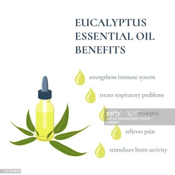 benefits of eucalyptus essential oil, illustration - アロマテラピー点のイラスト素材/クリップアート素材/マンガ素材/アイコン素材