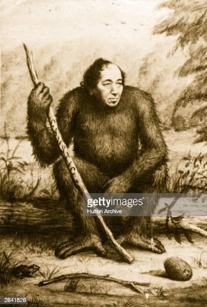 Benjamin Disraeli 1st Earl of Beaconsfield British novelist and statesman portrayed as a political gorilla