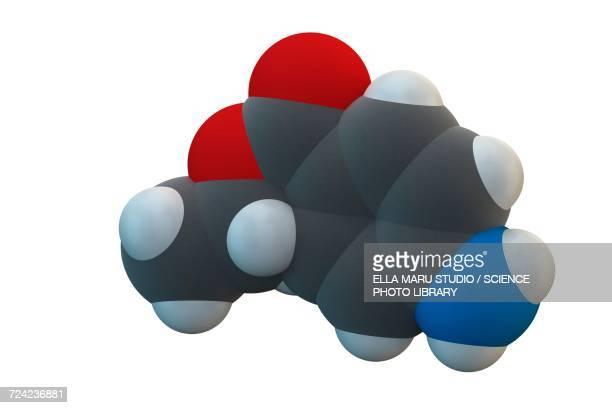Benzocaine local anesthetic drug molecule