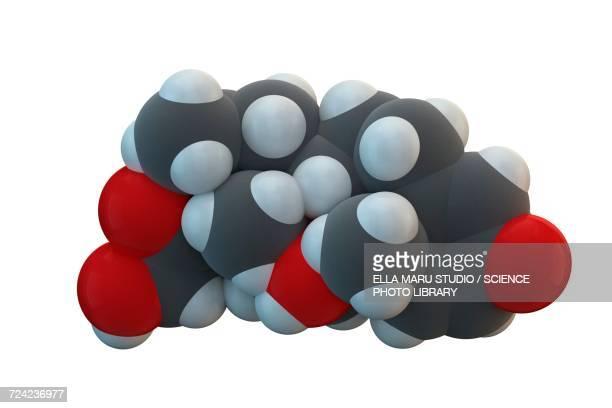 Betamethasone drug molecule
