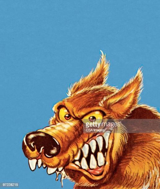 big bad wolf - furious stock illustrations