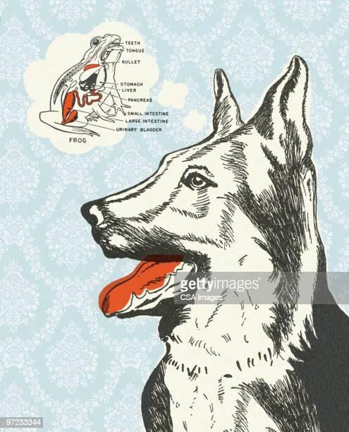 big dog - thought bubble stock illustrations