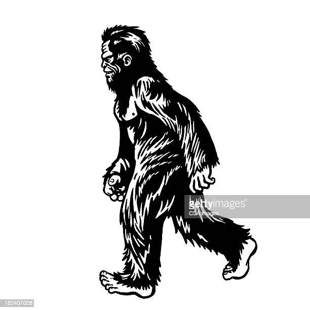 big foot - bigfoot stock illustrations