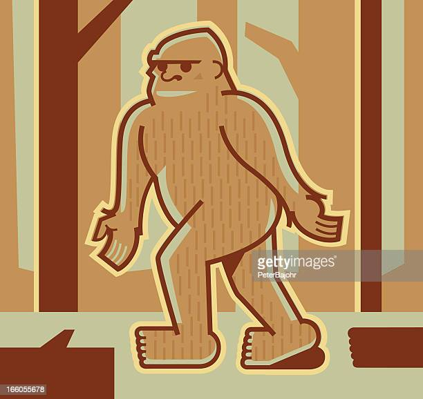 bigfoot or sasquatch - bigfoot stock illustrations