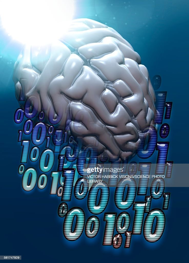 Binary code and human brain, illustration : stock illustration